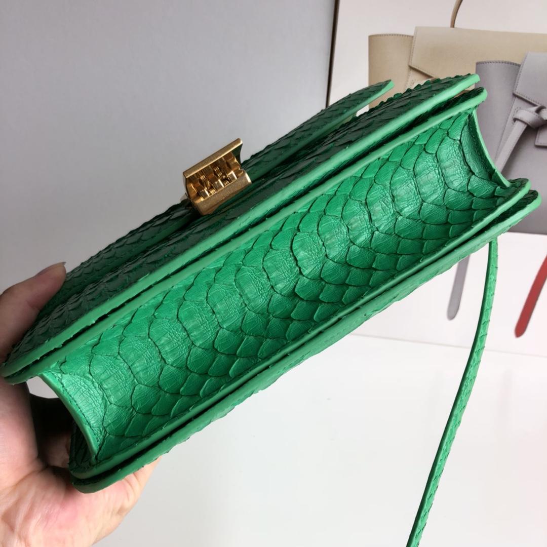 CELINE官网 classic box 24cm 真蛇皮 金扣 青草绿